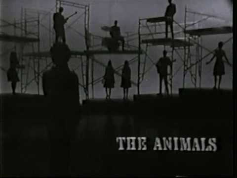 The Animals  Boom Boom , 1965 HQ ♫♥50 YEARS