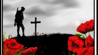 Remembrance Day (Armistice Day) R.I.P - Thank You!
