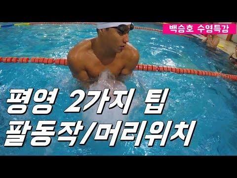 SHC 수영배우기_평영 팔동작,머리위치 핵심팁_백승호 선수
