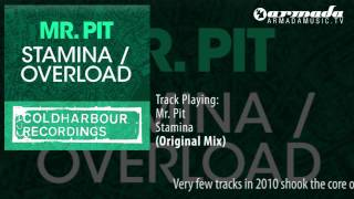 Mr. Pit - Stamina (Original Mix)