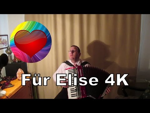 Für Elise (Beethoven) - Accordion - 4K Ultra HD