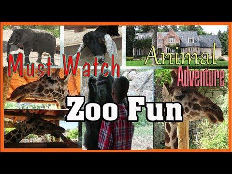 Cheyenne Mountain Zoo   Colorado Springs   Family