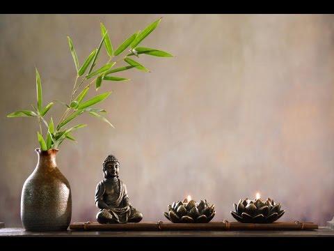 Комнатные растения по ФЕН-ШУЙ. Гармония вашей жизни