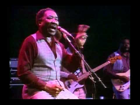 Muddy Waters   Mannish Boy   Live At Rockpalast   HQ