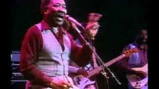 Download Muddy Waters   Mannish Boy   Live At Rockpalast   HQ