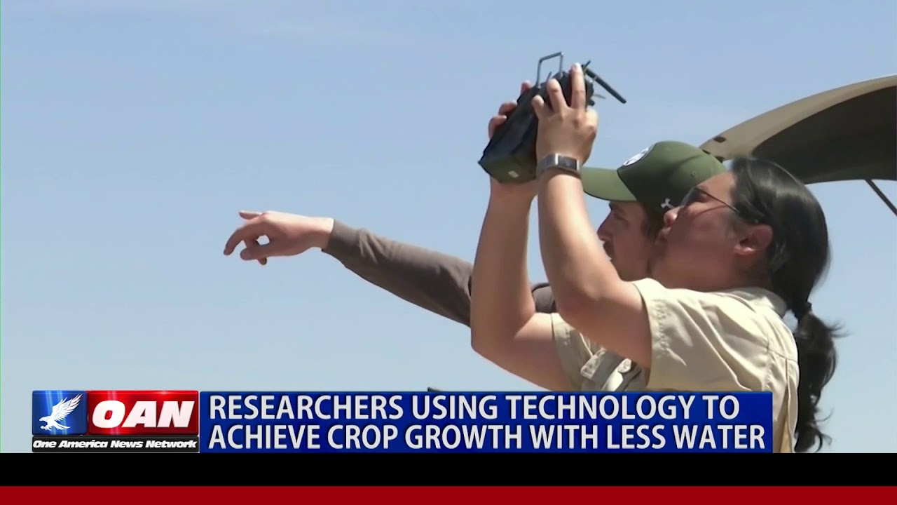 OAN Scientists testing crop growth using less water