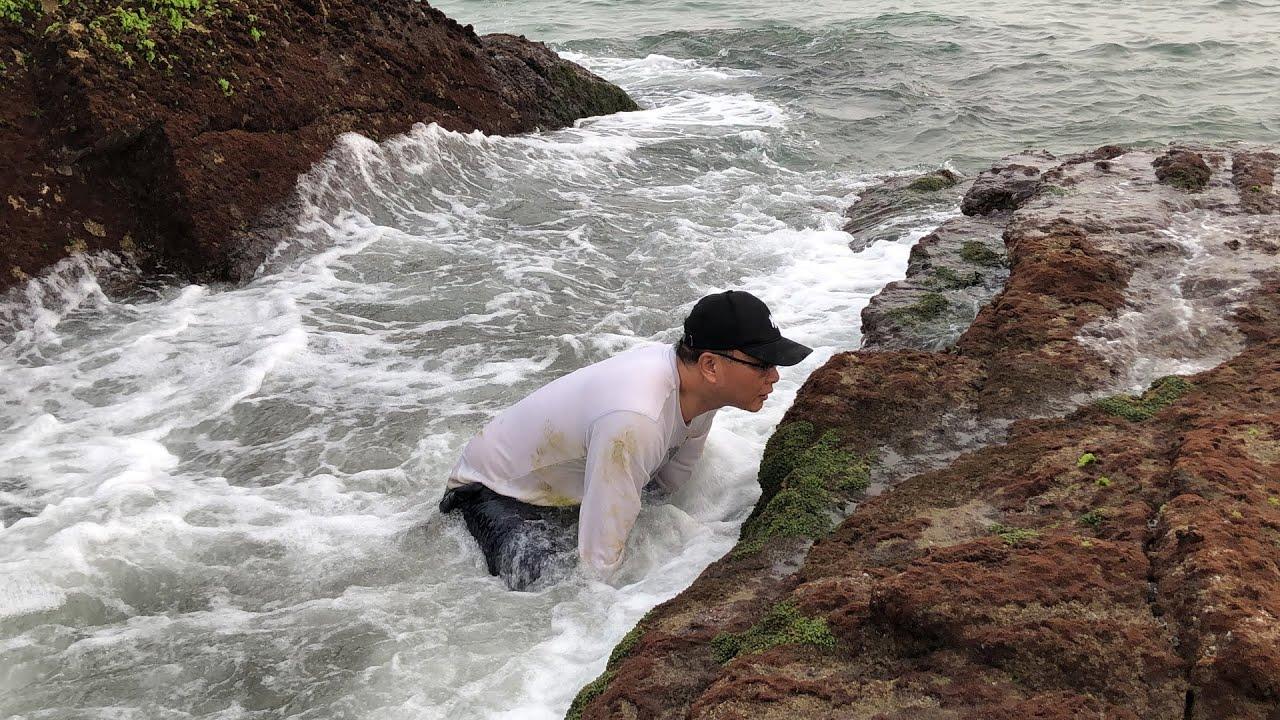 一个月只有两三天退潮才能过去的小岛,好多螃蟹 ,闲牛抓得好激动