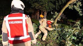 Forse brandweerinzet voor grote afgeknapte tak in Nieuw-Dordrecht