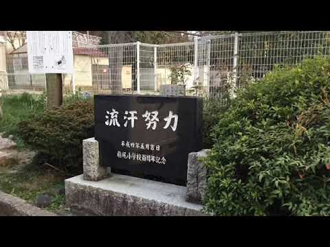 藤尾 小学校