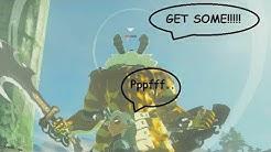 Every Golden Monster!! Zelda BotW