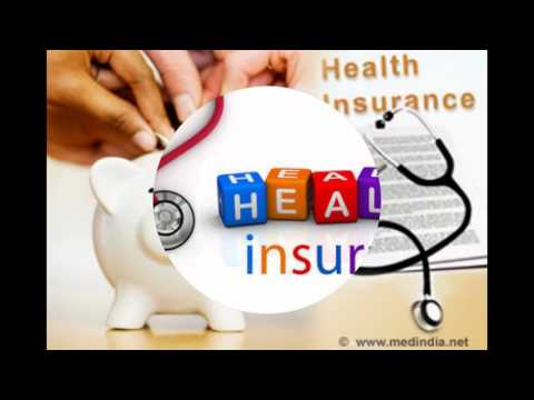 cheap pet insurance cost
