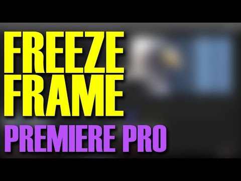 how to capture a still image freeze frame from a video in premiere pro 2017