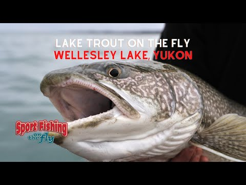 How To Fly Fish For Lake Trout