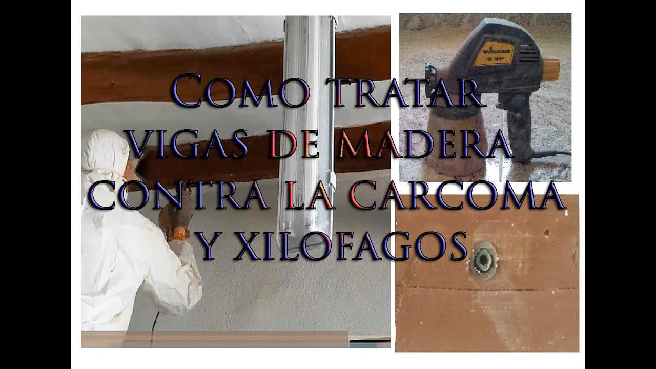 Como tratar vigas de madera contra la carcoma y xilofagos - Tratar la carcoma ...