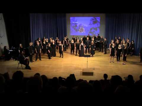 Fix You - Performed By Stonefields Community Choir