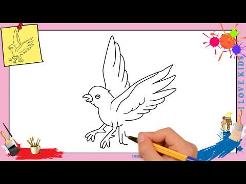 Comment dessiner un oiseau qui vole FACILEMENT etape par etape