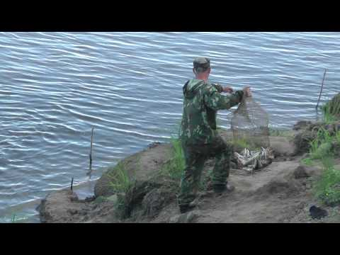 Обь - ещё раз о рыбалке - YouTube: www.youtube.com/watch?v=fQzq167841M