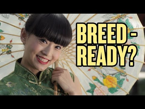 "Are Chinese Girls ""Breed Ready?"" 