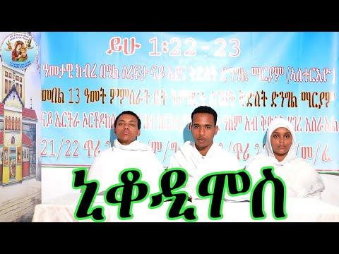 ሻቡዓይቲ ሰንበት ኒቆዲሞስ ብሕፃናት (መደብ ሕቶን መልስን) Eritrean Orthodox Tewahdo Church 2021