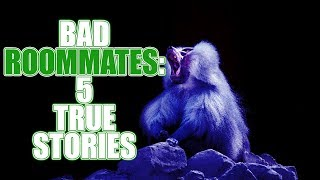 BAD ROOMMATES #2: 5 TRUE STORIES