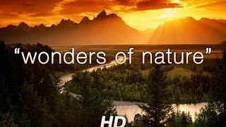 """Wonders of Nature"" 1 HR Amazing Nature HD Relaxation Video 1080p"