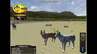 WolfQuest pack part1 ~Multiplayer~ We are Wolves! :D
