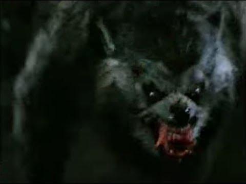 An American Werewolf In London (1981) - Trailer [Version 2]