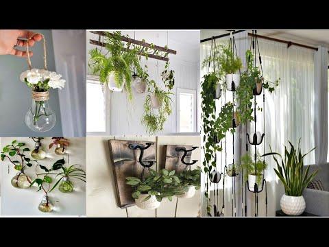 Inspire se com estas 18 ideias de plantas na decoração! Ideias de suporte para decorar!