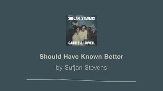 Should Have Known Better - Sufjan Stevens lyric video