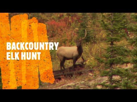 Backcountry Elk Hunt 2019, Mule Deer Down, Kootenay BC