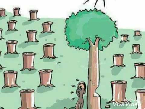 Save Trees And Water Save Life Short Photo Film By