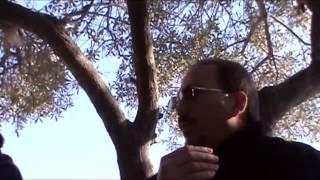 Entrevista Alejandro Castro Espín en la Acrópolis Grecia