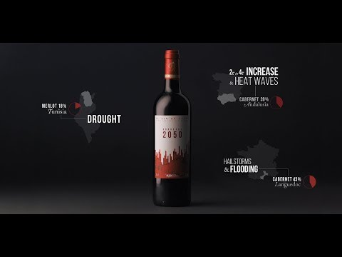 wine article Bordeaux 2050 Case Study