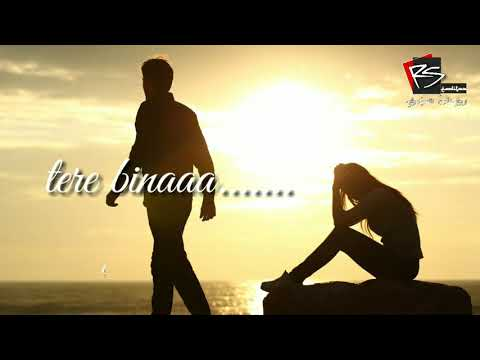 Ehsaan| whatsapp status | tere bina jeena sakunga |31 sec video | rs editz | 685k views