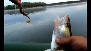 Ловля судака на джиг Рыбалка на спиннинг ДЖИГ на ОКЕ