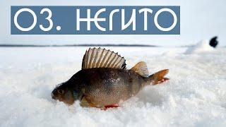 Зимняя рыбалка на озере Негито. DF 49