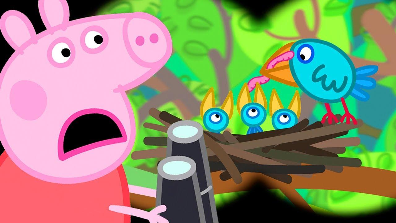 Peppa Pig Português Brasil   Caminhada   Aventura ao ar livre   Desenhos Animados