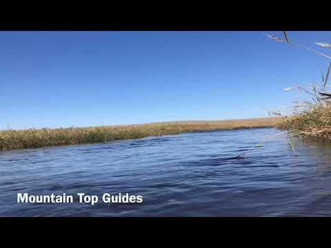 Mountain Top Guide San Carlos Apache  Sept. Elk Hunt 2018. Maylay Gap Unit. Arizona