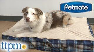 Aspen Pet Orthopedic Foam Bed from Petmate