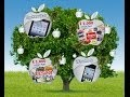 Quiz and win with Apple Tree