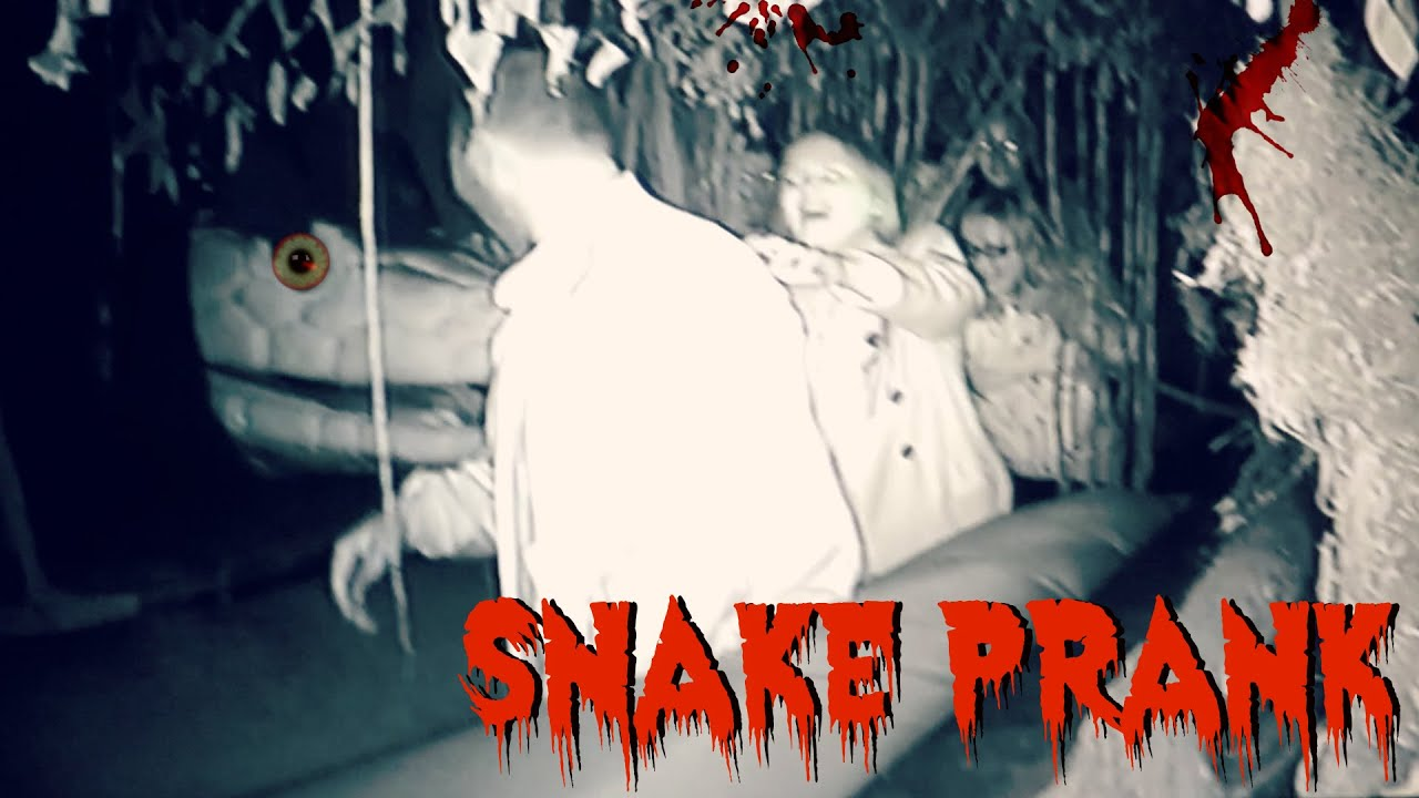 halloween snake prank fail - youtube