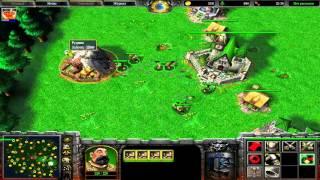 Warcraft 3: главные принципы игры FFA