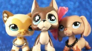 Как снять интересный LPS сериал? | Sweet Fox