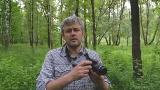 Как добиться максимального качества фотографий на Nikon D3300 ?