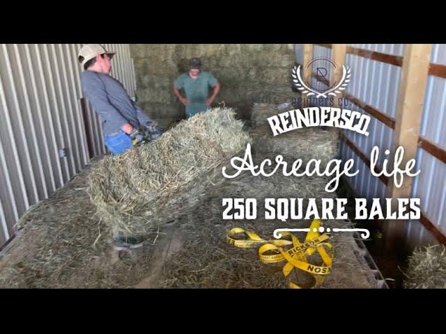Acreage Life. Pandemic Parenting. Unloading Hay.