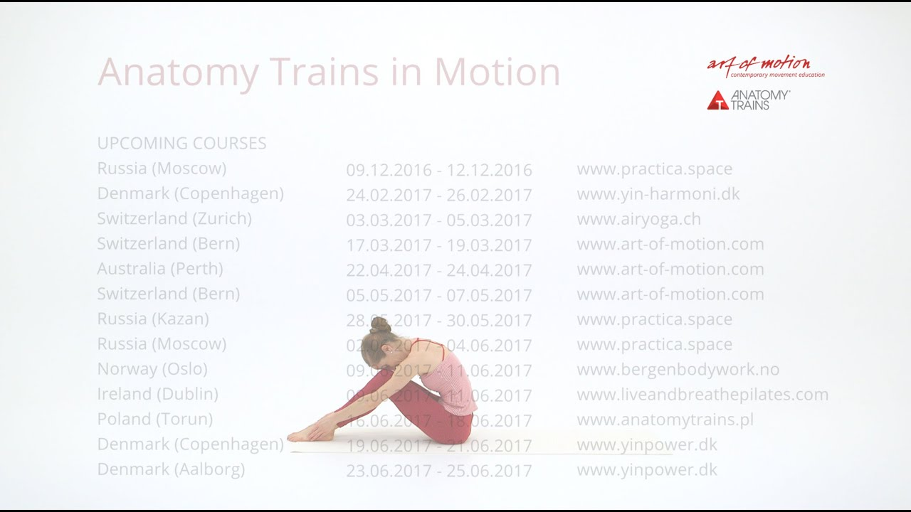 Anatomy Trains In Motion Upcoming Courses Youtube