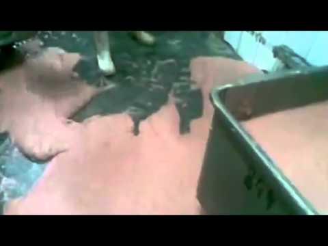 Как делают колбасу (без мата)