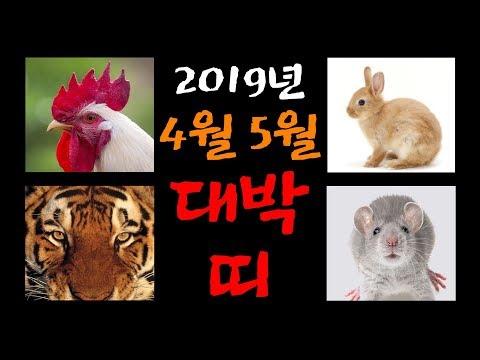 2019년 4, 5월 대박 나는 띠! 띠별 운세 사주풀이! 쥐띠, 범띠, 토끼띠, 닭띠