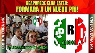 ULTIMA HORA Elba ester regresa para encabezar partido político y sera el nuevo pri!