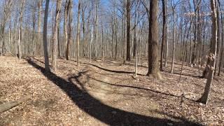 ASMR Hiking [Binaural] Beautiful Winter Day Hike with Peaceful Walking Sounds (Full Video) thumbnail